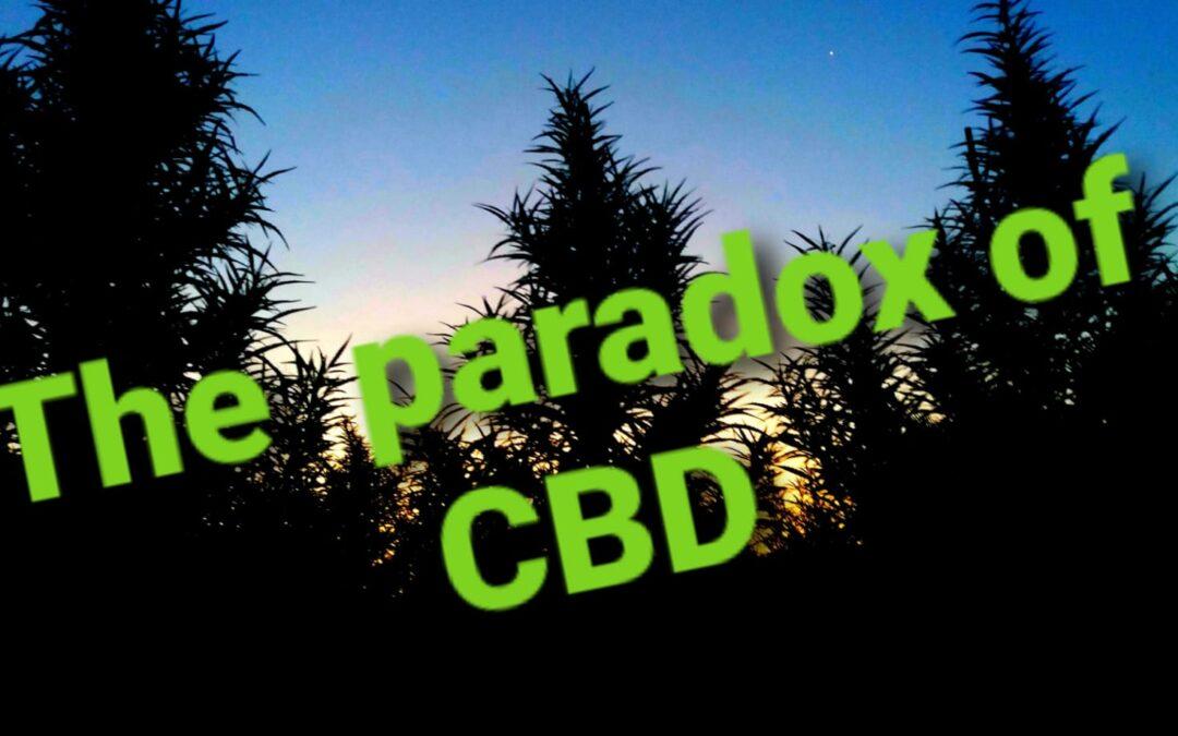 The Paradox of CBD